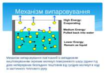 Механізм випаровування пов'язаний із випадковим виштовхуванням окремих молеку...