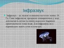 Інфразвук Інфразвук – це звукові коливання частотою менше 16 Гц. Саме інфразв...