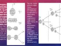 Дізнаємося про ланцюгову ядерну реакцію У 1939 р. було встановлено, що в резу...
