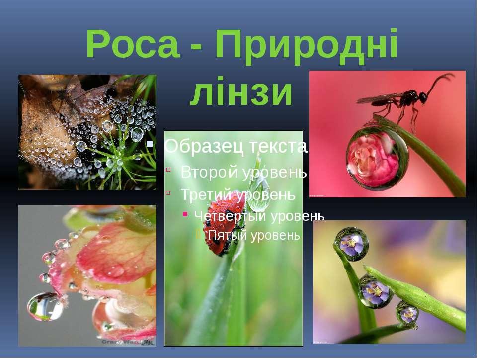 Роса - Природні лінзи