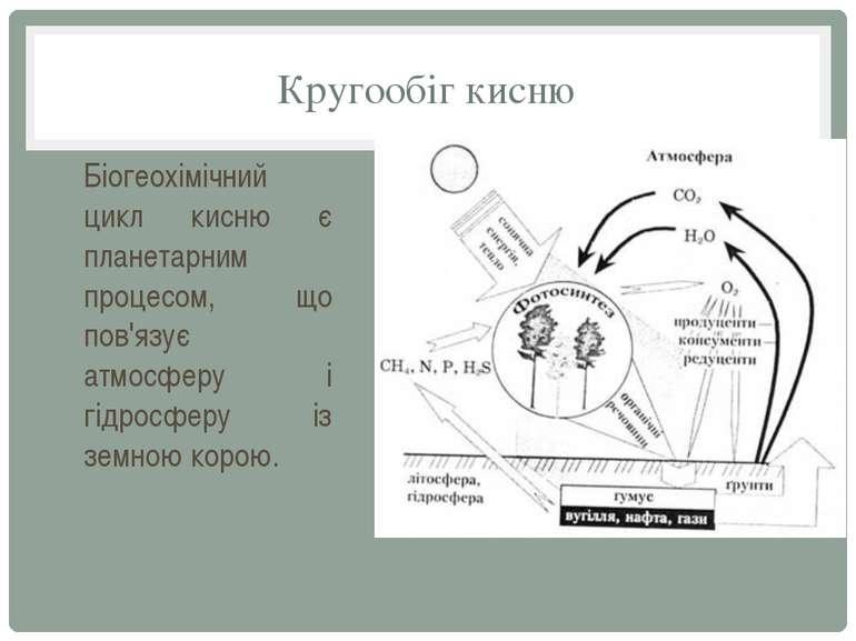 Кругообіг кисню Біогеохімічний цикл кисню є планетарним процесом, що пов'язує...