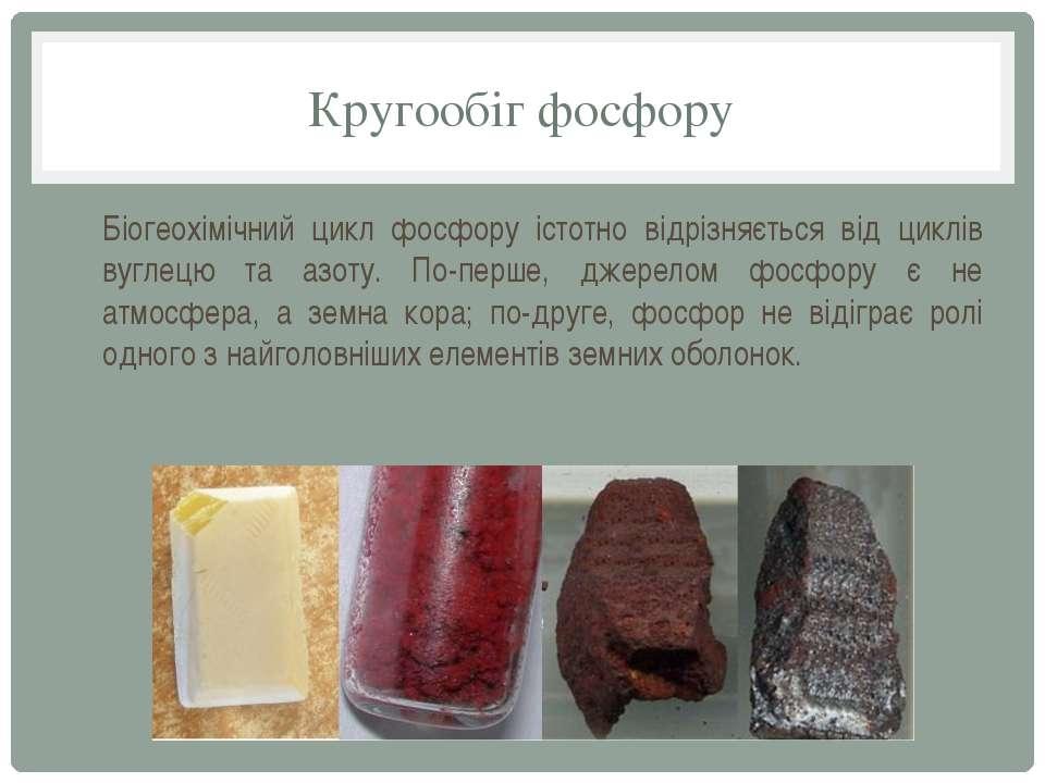 Кругообіг фосфору Біогеохімічний цикл фосфору істотно відрізняється від циклі...