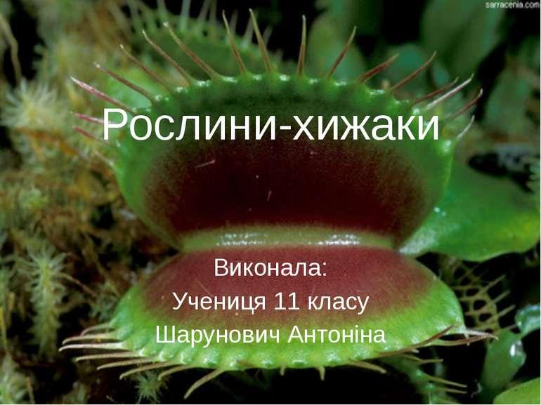 Рослини-хижаки Виконала: Учениця 11 класу Шарунович Антоніна