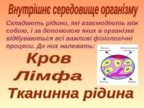Складають рідини, які взаємодіють між собою, і за допомогою яких в організмі ...