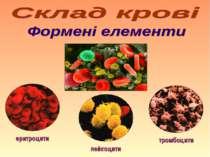еритроцити лейкоцити тромбоцити
