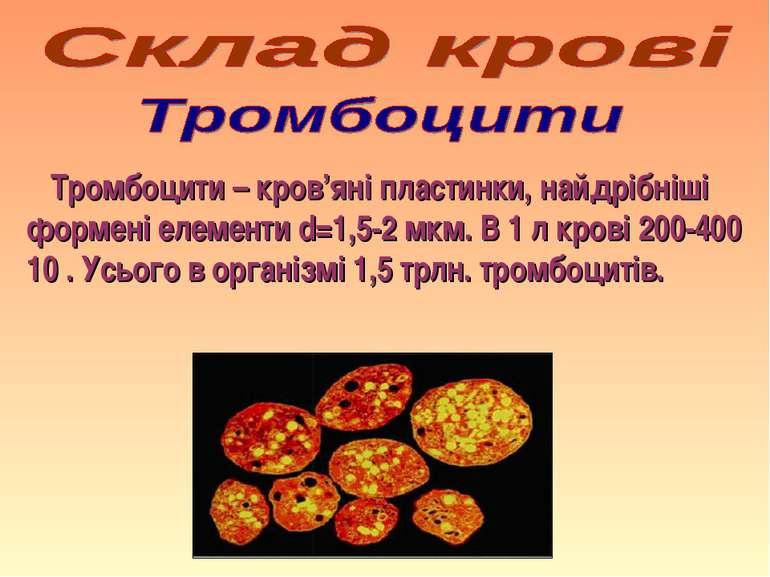Тромбоцити – кров'яні пластинки, найдрібніші формені елементи d=1,5-2 мкм. В ...