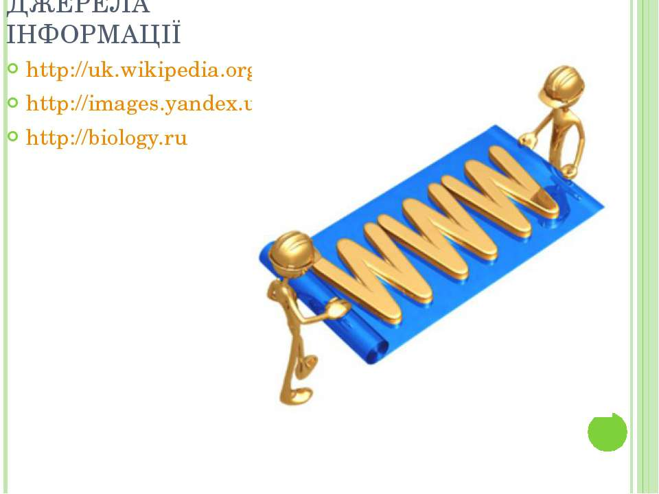 ДЖЕРЕЛА ІНФОРМАЦІЇ http://uk.wikipedia.org/ http://images.yandex.ua/ http://b...
