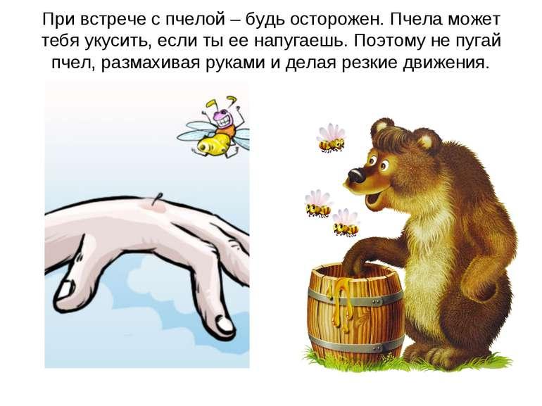 При встрече с пчелой – будь осторожен. Пчела может тебя укусить, если ты ее н...