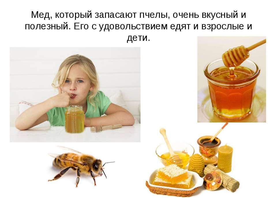 Мед, который запасают пчелы, очень вкусный и полезный. Его с удовольствием ед...