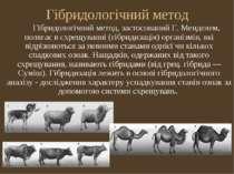 Гібридологічний метод Гібридологічний метод, застосований Г. Менделем, поляга...