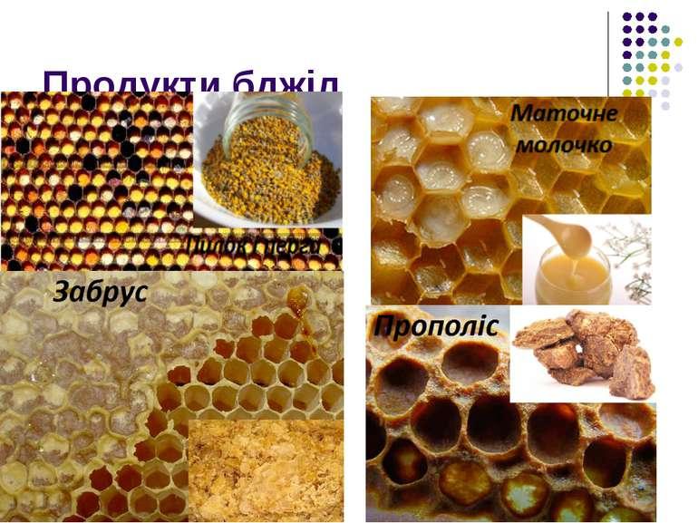 Продукти бджіл