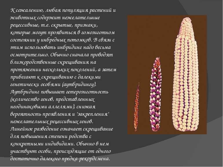 К сожалению, любая популяция растений и животных содержит нежелательные рецес...