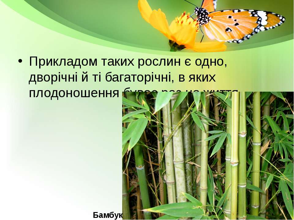 Прикладом таких рослин є одно, дворічні й ті багаторічні, в яких плодоношення...