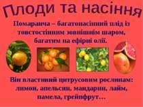 Помаранча – багатонасінний плід із товстостінним зовнішнім шаром, багатим на ...