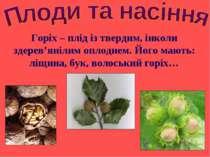 Горіх – плід із твердим, інколи здерев'янілим оплоднем. Його мають: ліщина, б...