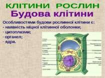 Особливостями будови рослинної клітини є: - наявність міцної клітинної оболон...