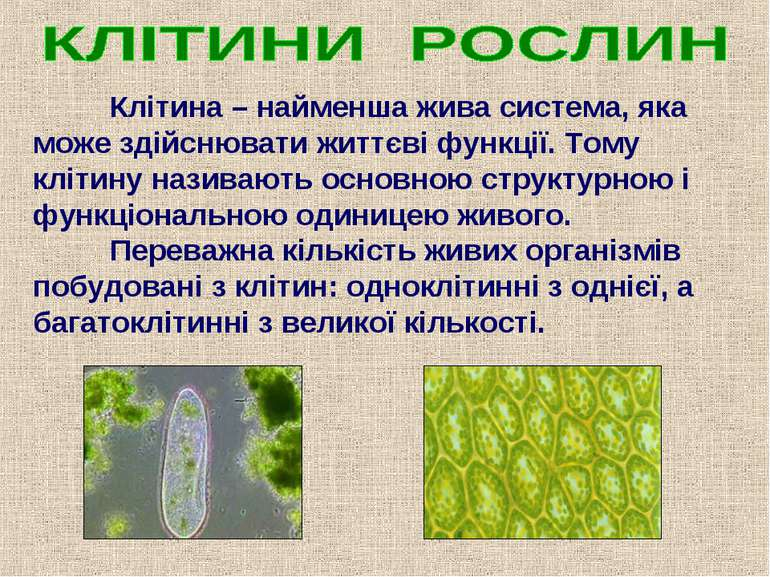 Клітина – найменша жива система, яка може здійснювати життєві функції. Тому к...