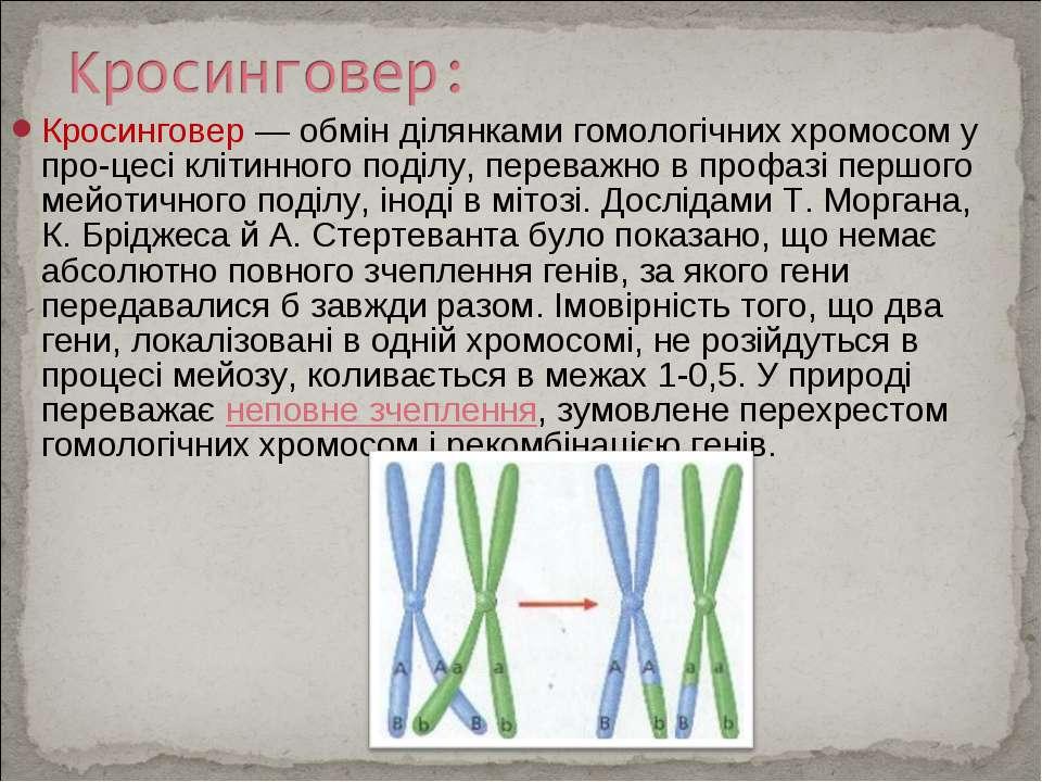 Кросинговер — обмін ділянками гомологічних хромосом у про цесі клітинного под...