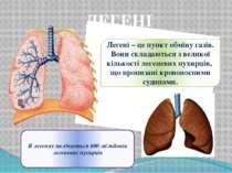 ЛЕГЕНІ Легені – це пункт обміну газів. Вони складаються з великої кількості л...