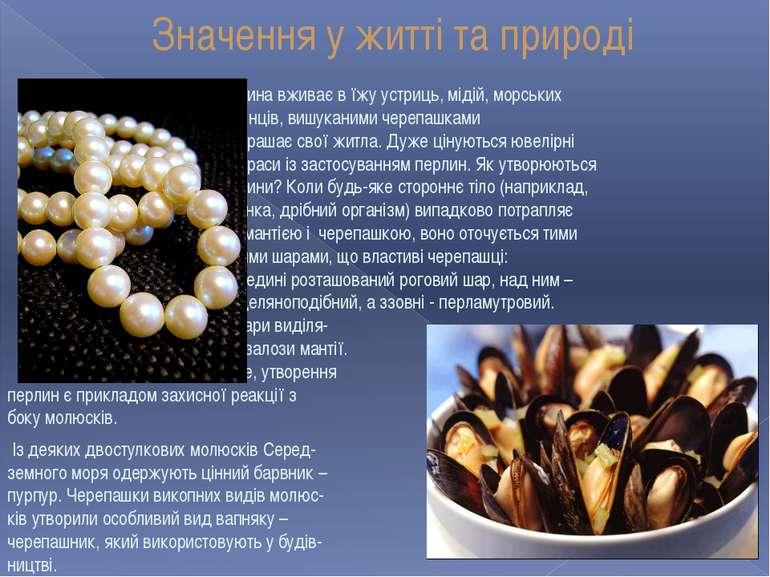 Значення у житті та природі Людина вживає в їжу устриць, мідій, морських греб...