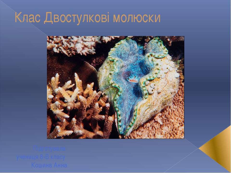 Клас Двостулкові молюски Підготувала учениця 8-В класу Кошина Анна