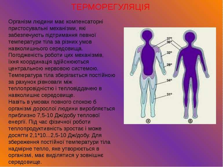 ТЕРМОРЕГУЛЯЦІЯ Організм людини має компенсаторні пристосувальні механізми, як...
