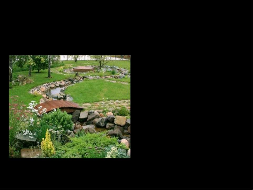 Значення декоративних та вічнозелених рослин в оформленні паркових ділянок. В...