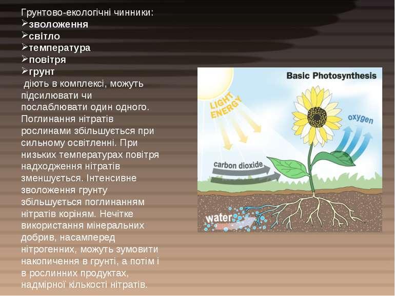 Грунтово-екологічні чинники: зволоження світло температура повітря грунт діют...