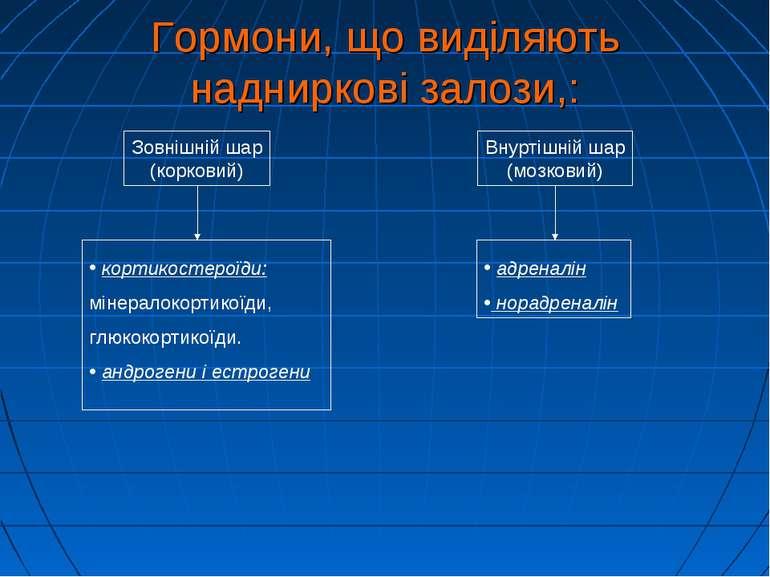 Зовнішній шар (корковий) Внуртішній шар (мозковий) кортикостероїди: мінералок...