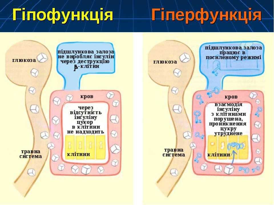 Гіпофункція Гіперфункція