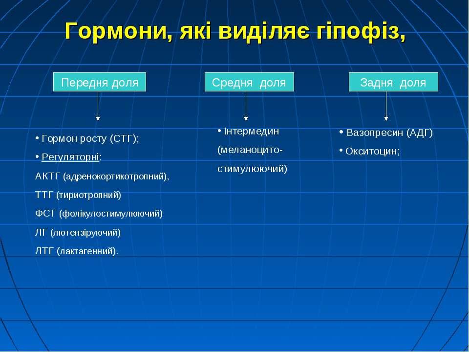 Передня доля Гормон росту (СТГ); Регуляторні: АКТГ (адренокортикотропний), ТТ...