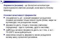 Ферменти (ензими) - це біологічні каталізатори (прискорювачі) хімічних реакці...