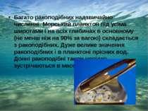 Багато ракоподібних надзвичайно численні. Морський планктон під усіма широтам...