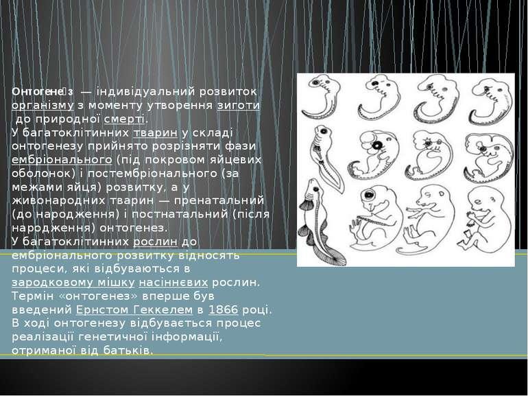 Онтогене з— індивідуальний розвитокорганізмуз моменту утвореннязиготидо...