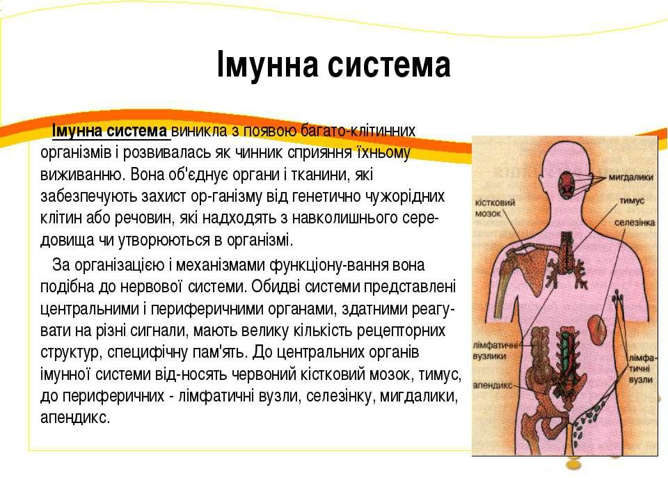 Імунна система Імунна система виникла з появою багато-клітинних організмів і ...