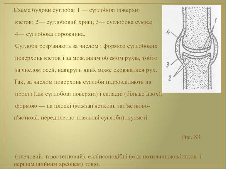 Схема будови суглоба: 1 — суглобові поверхні кісток; 2— суглобовий хрящ; 3— с...