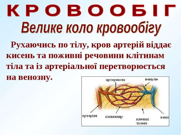 Рухаючись по тілу, кров артерій віддає кисень та поживні речовини клітинам ті...