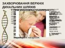ЗАХВОРЮВАННЯ ВЕРХНІХ ДИХАЛЬНИХ ШЛЯХІВ При диханні повітря потрапляє в носові ...