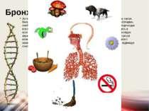 Бронхіальна астма Астма виникає, в першу чергу, в результаті надмірного захоп...