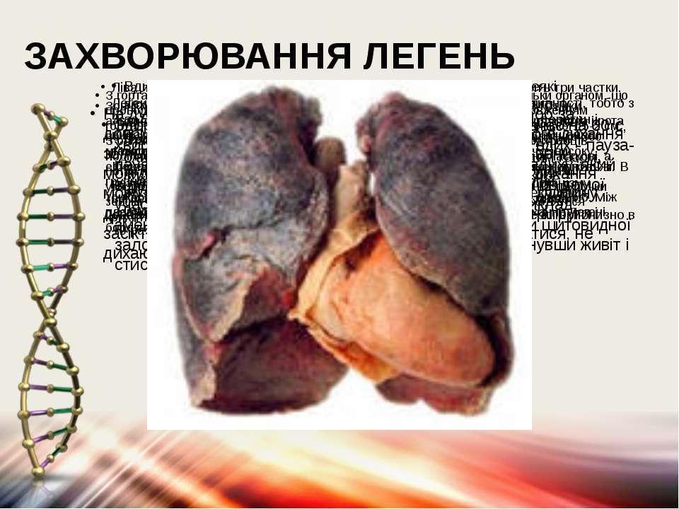 ЗАХВОРЮВАННЯ ЛЕГЕНЬ З гортанної частини глотки повітря направляється в гортан...