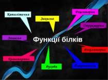 Функції білків Структурна Каталітична Регуляторна Рухова Транспортна Захисна ...