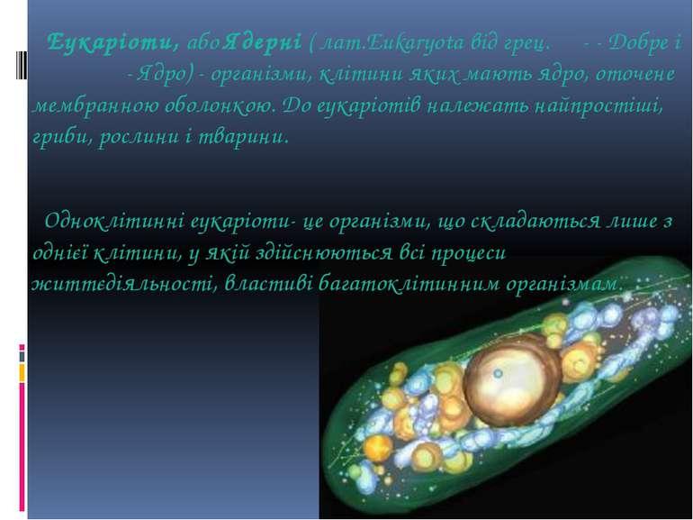 Еукаріоти, або Ядерні ( лат.Eukaryota від грец. εύ- - Добре і κάρυον - Ядро) ...