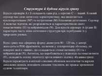 Структура й будова вірусів грипу Віруси сероварів А і В складають один рід, а...