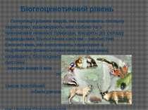 Популяції різних видів, які населяють спільну територію, взаємодіють між собо...