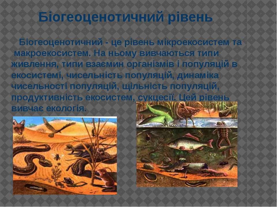 Біогеоценотичний - це рівень мікроекосистем та макроекосистем. На ньому вивча...