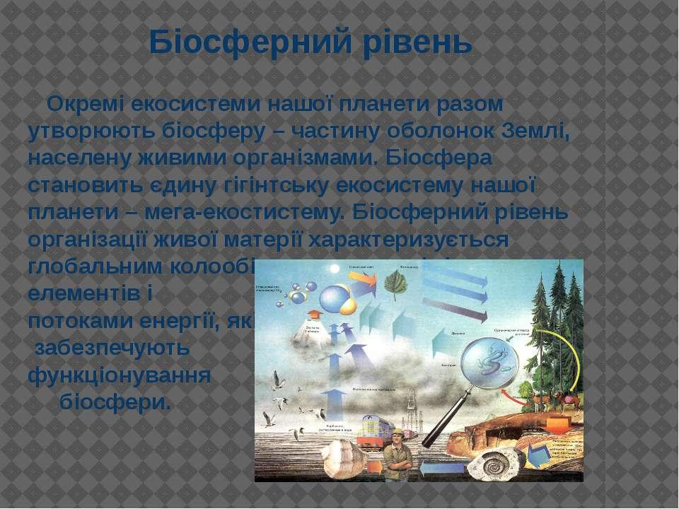 Окремі екосистеми нашої планети разом утворюють біосферу – частину оболонок З...