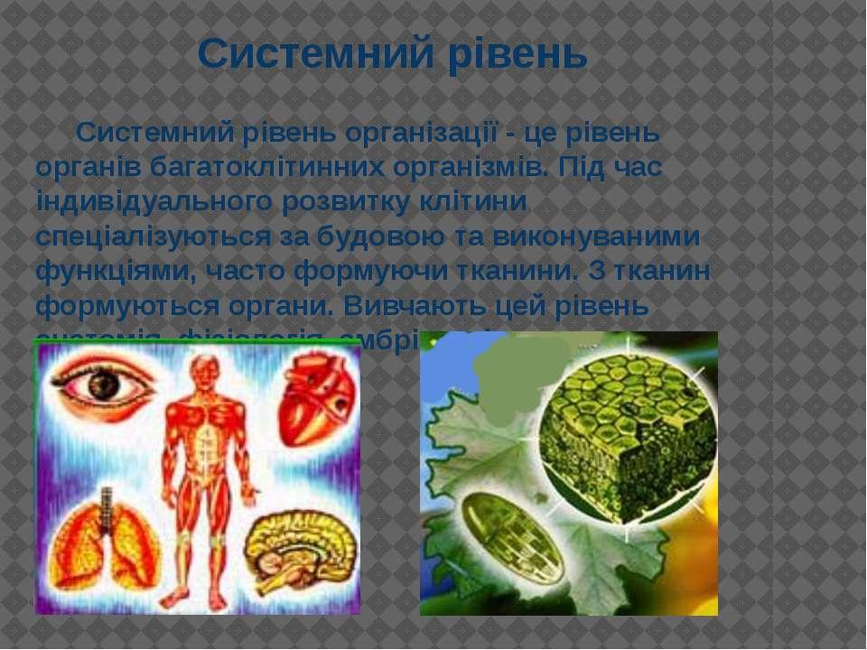 Системний рівень організації - це рівень органів багатоклітинних організмів. ...