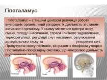 Гіпоталамус Гіпоталамус – є вищим центром регуляції роботи внутрішніх органів...