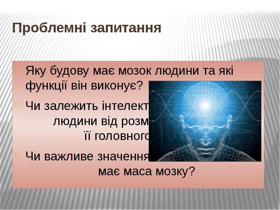 Проблемні запитання Яку будову має мозок людини та які функції він виконує? Ч...