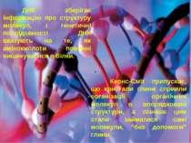 ДНК зберігає інформацію про структуру молекул, і генетичні послідовності ДНК ...